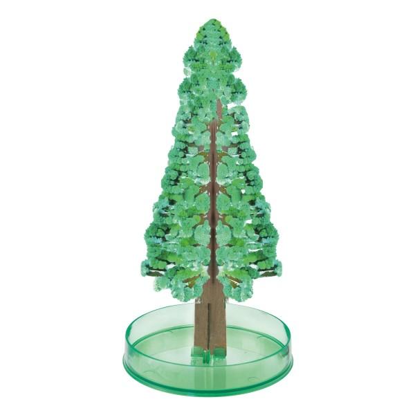 Der magische Tannenbaum gross