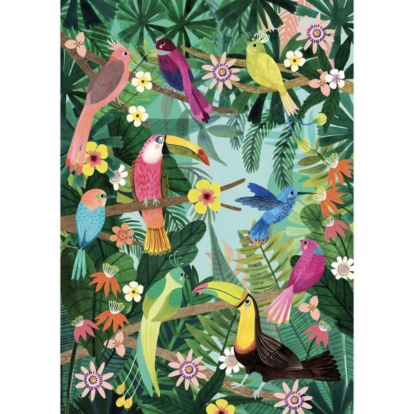 Poster Vögel